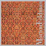 Morton Feldman / Patterns in a Chromatic Field / Charles Curtis / Aleck Karis